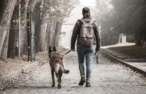 15 Dog Walking Dangers and Safety Tips