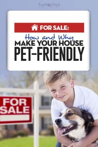 For Sale - 15 Ways to Make Your House Pet-Friendly Before Selling