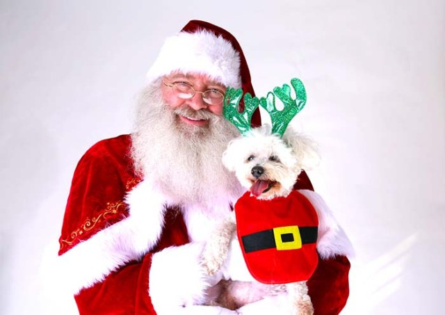 Take A Photo with Santa or Easter Bunny
