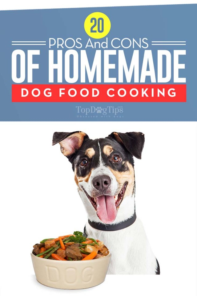 20 Pros and Cons of Making Homemade Dog Foods