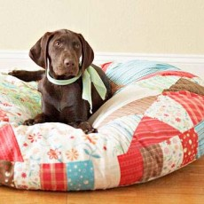 how to wash a dog bed