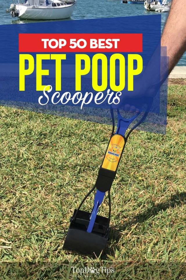 50 Top Rated Best Dog Pooper Scooper Brands