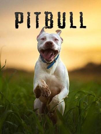 Pitbull dog documentary