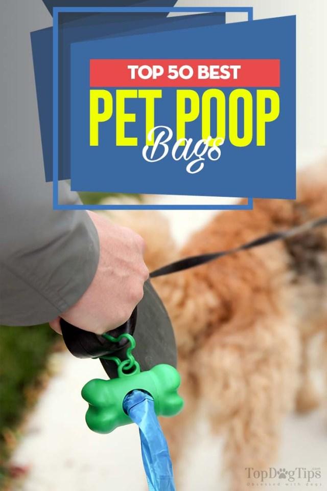 Top Rated 50 Best Dog Poop Bags