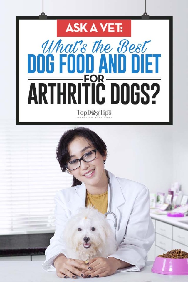 Ask a Veterinarian - What Is the Best Dog Food for Arthritis