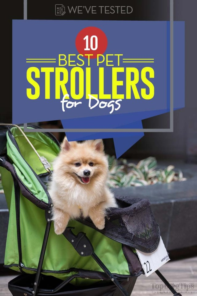 10 Top Rated Best Dog Stroller Choices