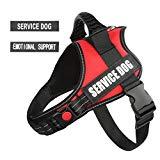 PawShoppie Reflective Service Dog Harness