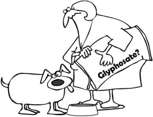 Detection of glyphosate residues in companion animal feeds