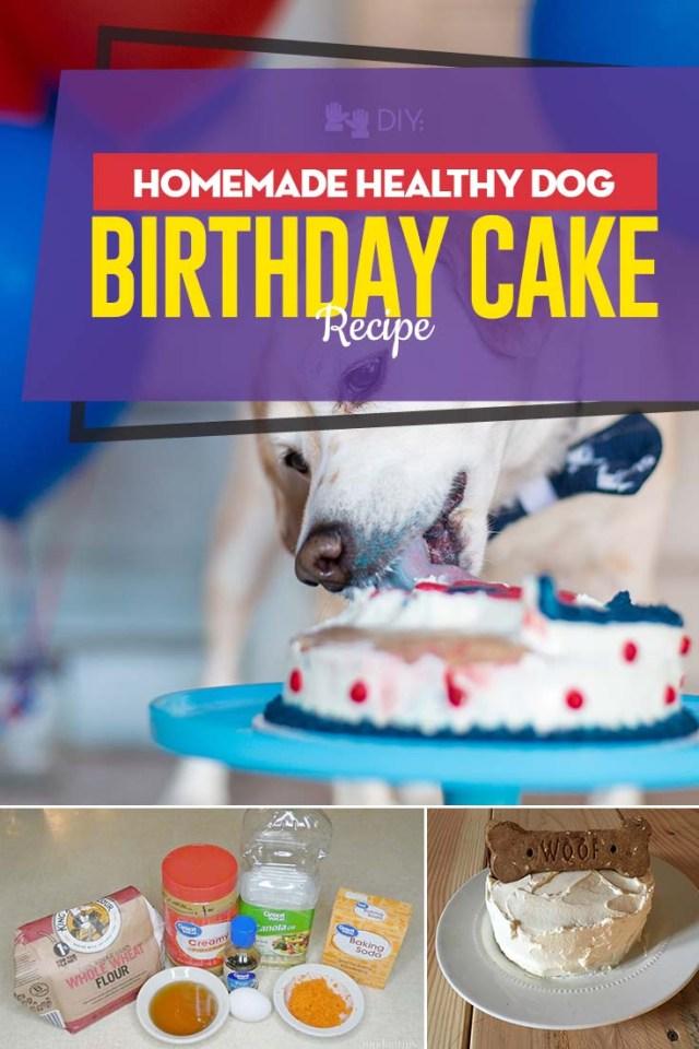 The Best Homemade Healthy Dog Birthday Cake Recipe
