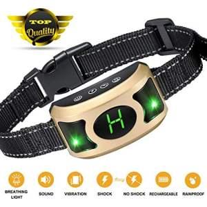 GYM Bark Collar with Breathing Light
