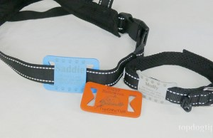 Dog Collar Tags Review