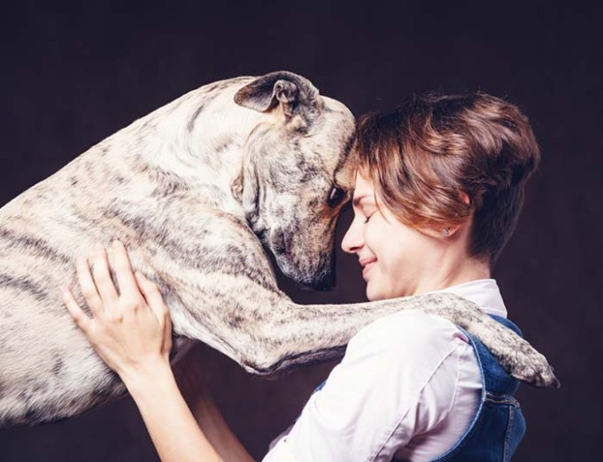 Dogs Love You More When You Smile, Science Says