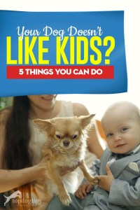 Your Dog Doesn't Like Kids - Top 5 Things You Can Do