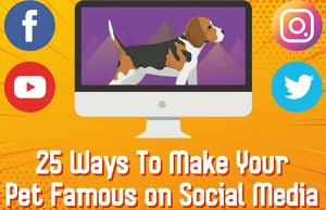 25 Ways to Make Your Pet Famous on Social Media