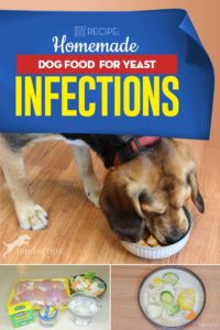 Homemade Dog Food for Yeast Infections Recipe