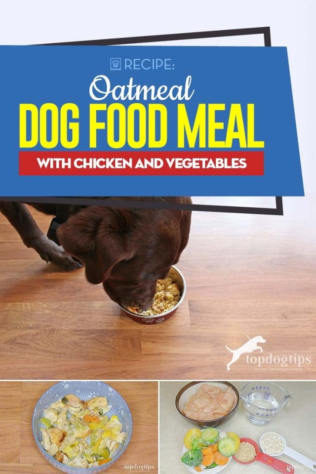 My Favorite Oatmeal Dog Food Meal with Chicken and Vegetables Recipe