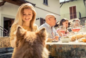 Dogs with Guests in the Home
