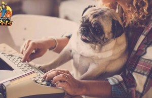 How to Get Your Pets Book Published
