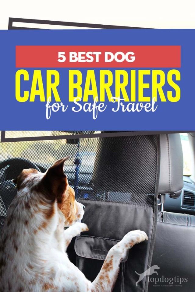 Top 5 Best Dog Car Barriers for Safe Travel