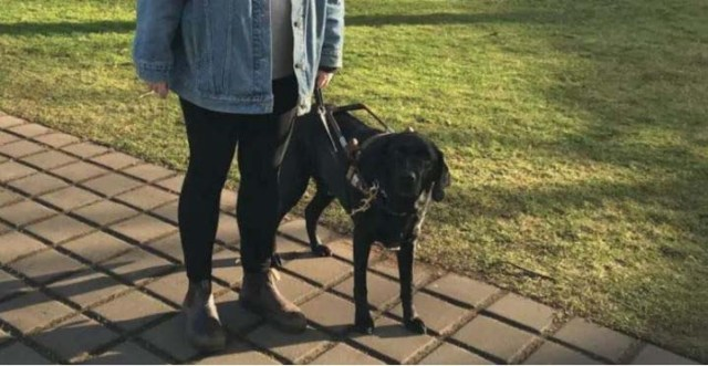 Visually impaired student with her guide dog