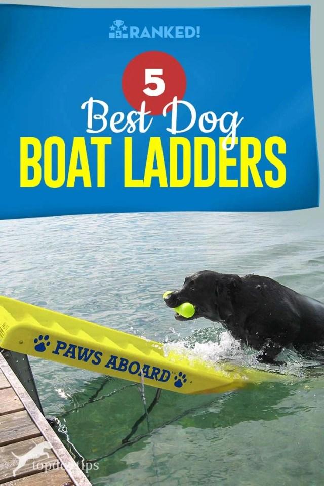 5 Top Rated Best Dog Boat Ladder Brands