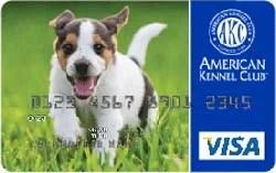 American Kennel Club Visa