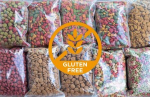 Best Gluten Free Dog Foods and Recipes for Dogs with Gluten Sensitivity