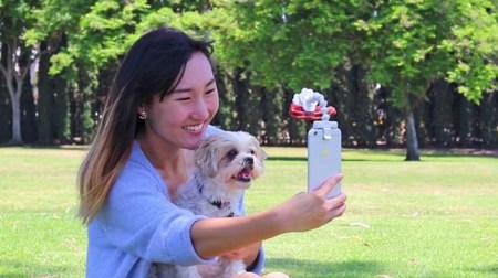 Dog-Distracting Photo Accessories - Flexy Paw