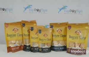 Dogsee Chew Review