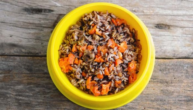 Homemade dog food cost and budgeting