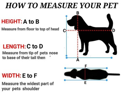 How to measure your dog for a carrier bag