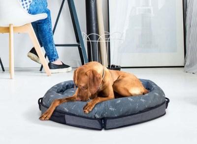 Travel-Friendly Beds - SPRUCE Portable Dog Bed