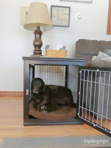 What is Dog Crate Furniture