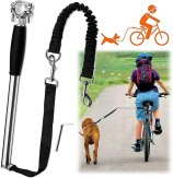 videosystems best dog bike leash
