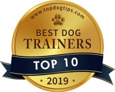 Top 10 Best Dog Trainers