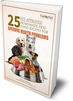 Vet Recommended Homemade Dog Food Recipes Book