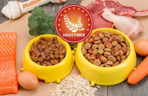 The Best High Fiber Dog Foods for Anal Gland Problems