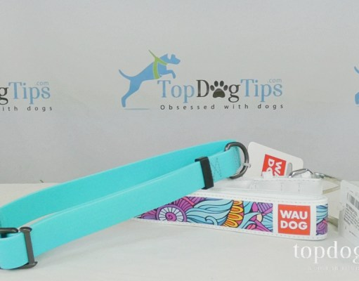 WAUDOG Dog Collars Giveaway