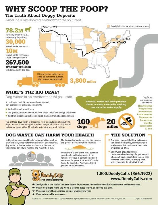 Why scoop the poop infographic