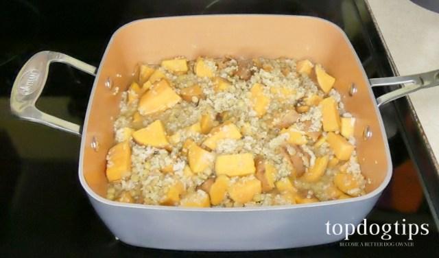 10 Best Hypoallergenic Dog Food Recipes