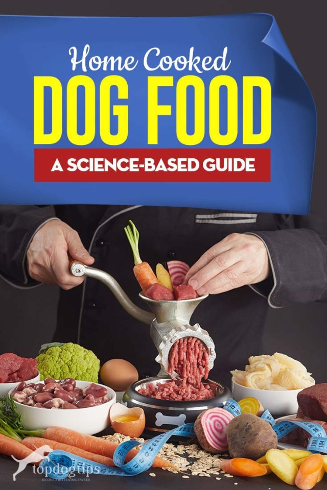 The Science-based Guide to Home Cooked Dog Food Recipes