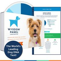 Wisdom Panel Health Canine DNA Test