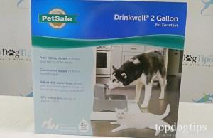 PetSafe Drinkwell Fountain