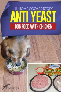 Recipe of Anti Yeast Dog Food with Chicken