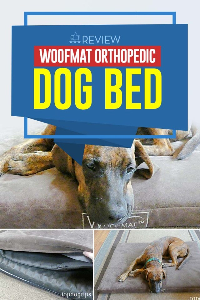 Review of Woofmat Orthopedic Dog Bed