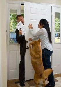 Close the Door dog trick
