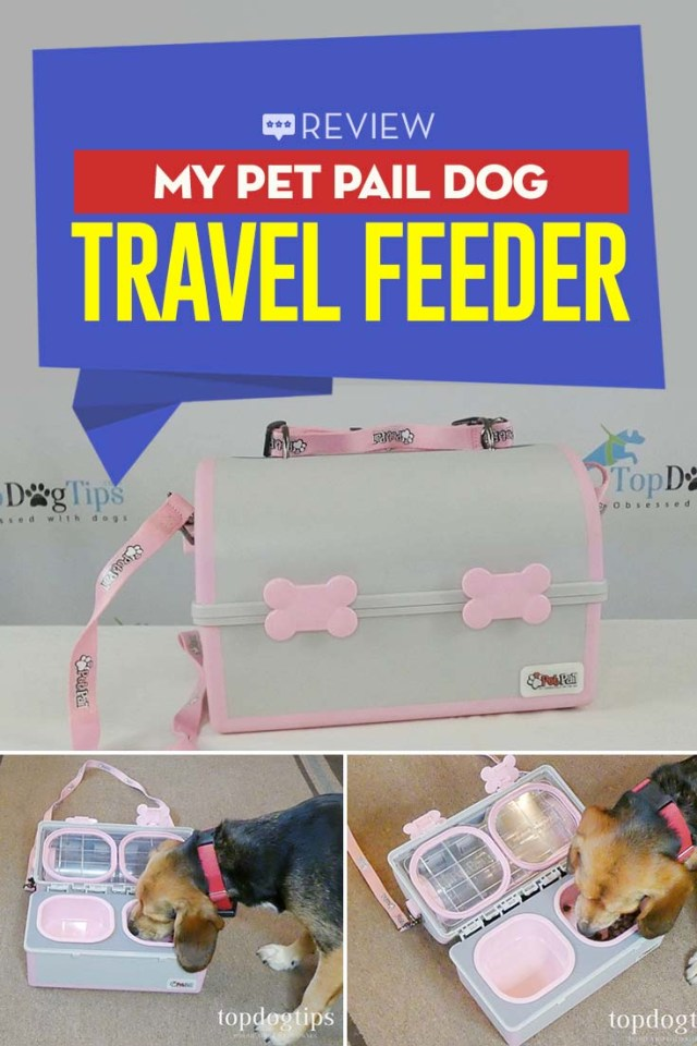 Review of My Pet Pail Dog Travel Feeder