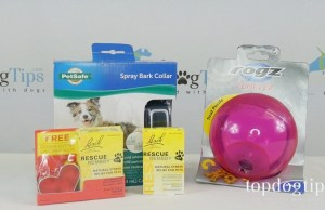Separation Anxiety Prize Pack Giveaway