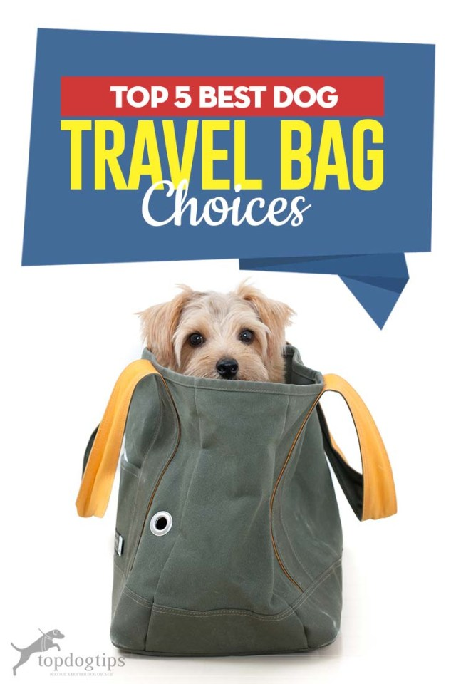 The 5 Best Dog Travel Bag Choices