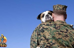 How One Veteran is Helping Shelter Dogs in Need